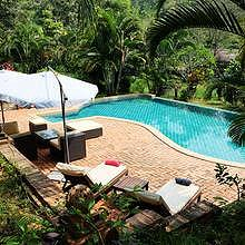 Swimming pool in the tropical garden