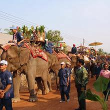 Parade of elephants in Hongsa during the festival